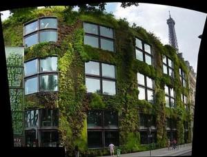 Giardino verticale Vancouver