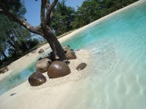 Realizzazione piscine biologiche