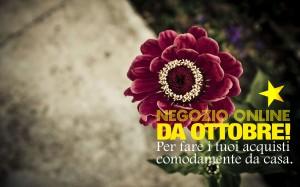 Negozio piante fiori online