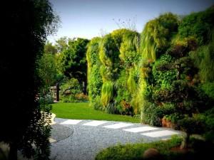 Realizzazione giardino verticale
