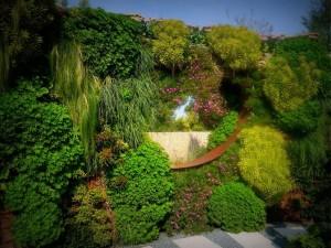 Progettazione giardini verticali