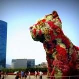 Giardini verticali, guinness dei primati e cagnoloni fioriti