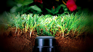 Impianto di irrigazione per il giardino