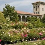 Giardinaria e le Meraviglie del Verde