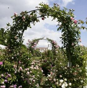 Franciacorta in fiore arco di rose