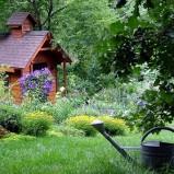 In giardino e nell'orto nel mese di luglio