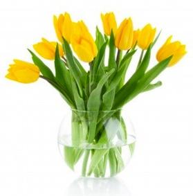 Curare i fiori freschi recisi