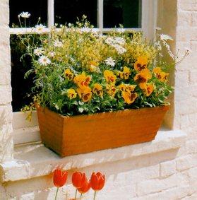 Composizione di fiori estivi