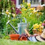 5 Domande sul Giardinaggio con ProntoPRO Blog